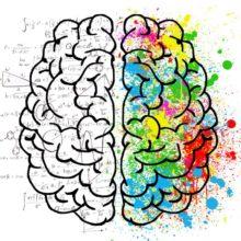 Werkvorm : creatieve therapie